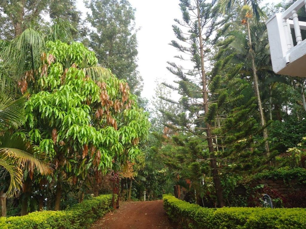 Entry of Nature Nirvana Resort