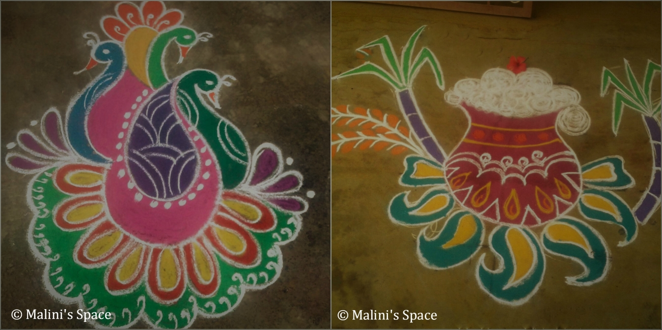 Pongal Celebration Rangoli