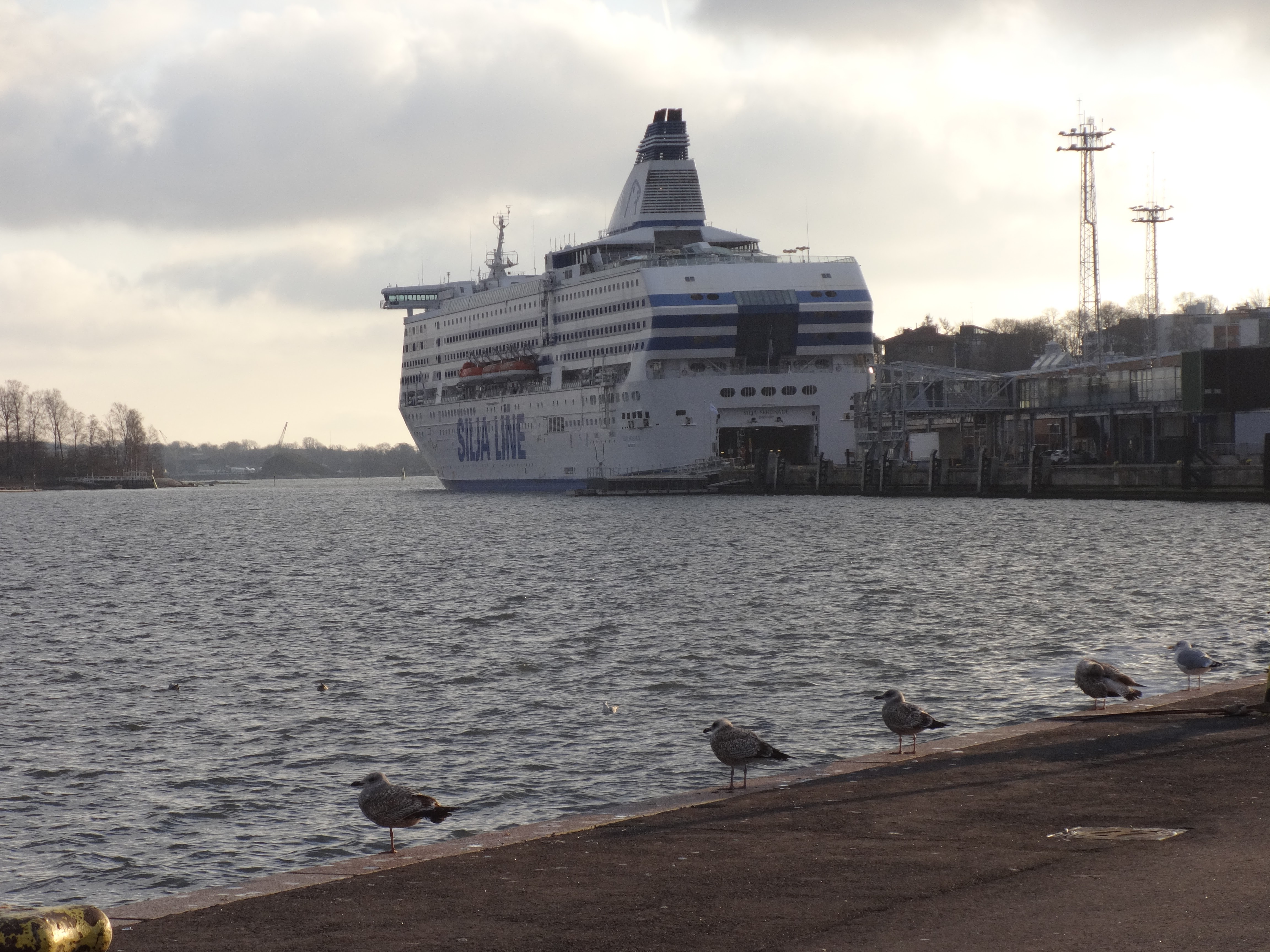 Silja Line and Birds View